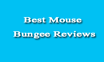 Best Mouse Bungee Reviews in 2020- Detailed Guide